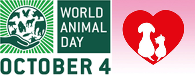 Taiwanese music legends support World Animal Day